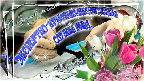 яркие цветы, поздравления начальника криминалистики одна
